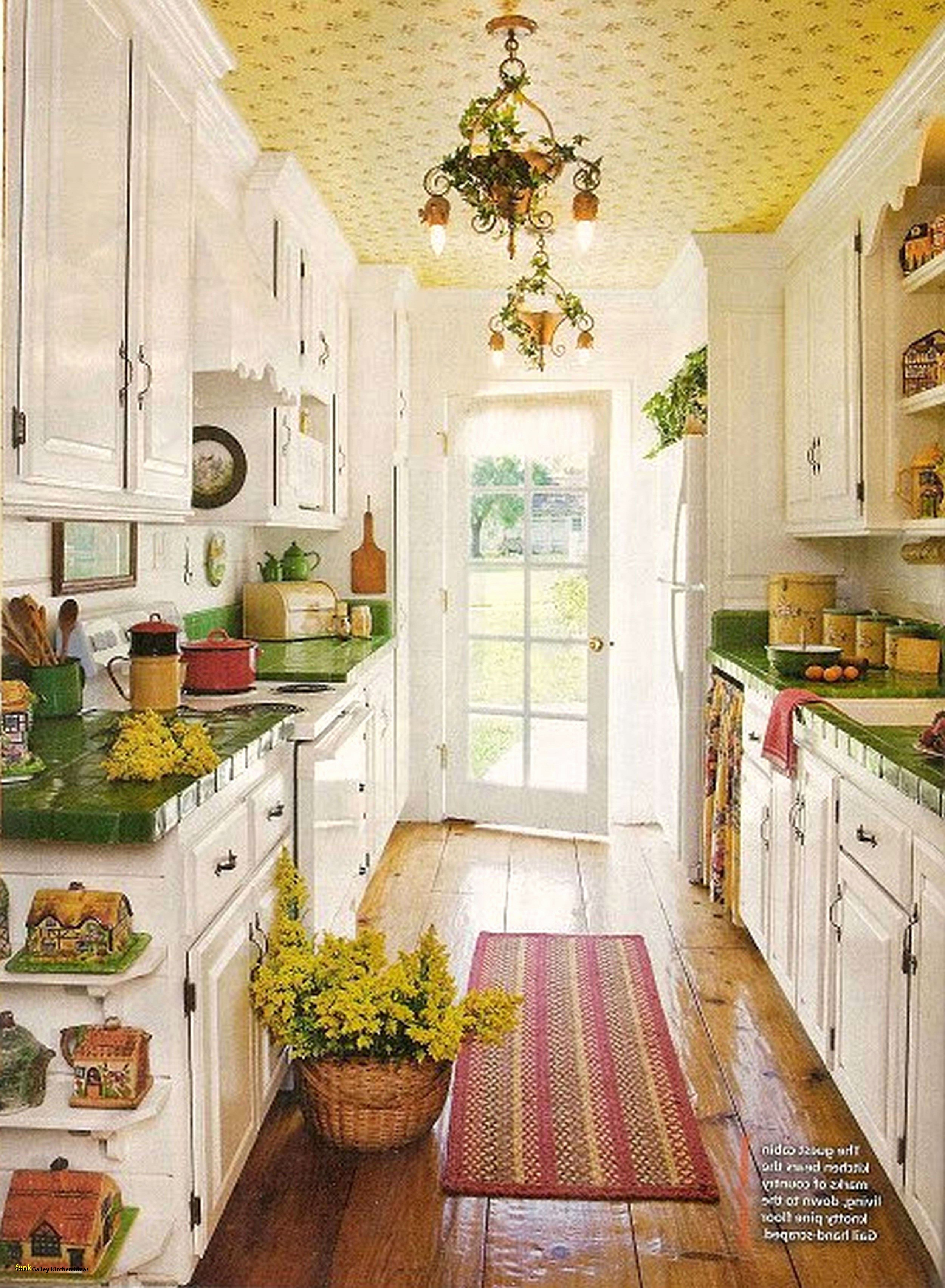 Desain Dapur Online Paling Bagus Untuk Galley Kitchen Modern Design Awesome Small Galley Kitchen Ideas Of Desain Dapur Online Terbaru Untuk Small Kitchen Design Layout 10—10 Small Kitchen Remodeling Home