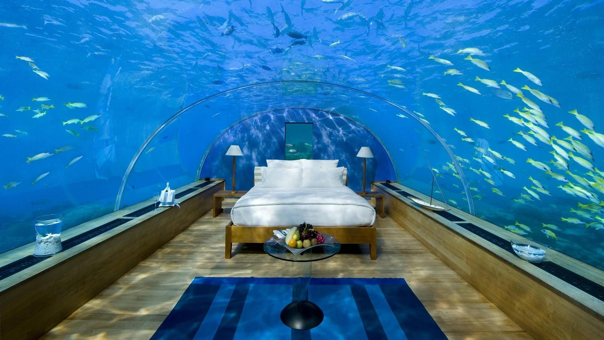 Coolest bedroom ever what i wouldn t give to live in that