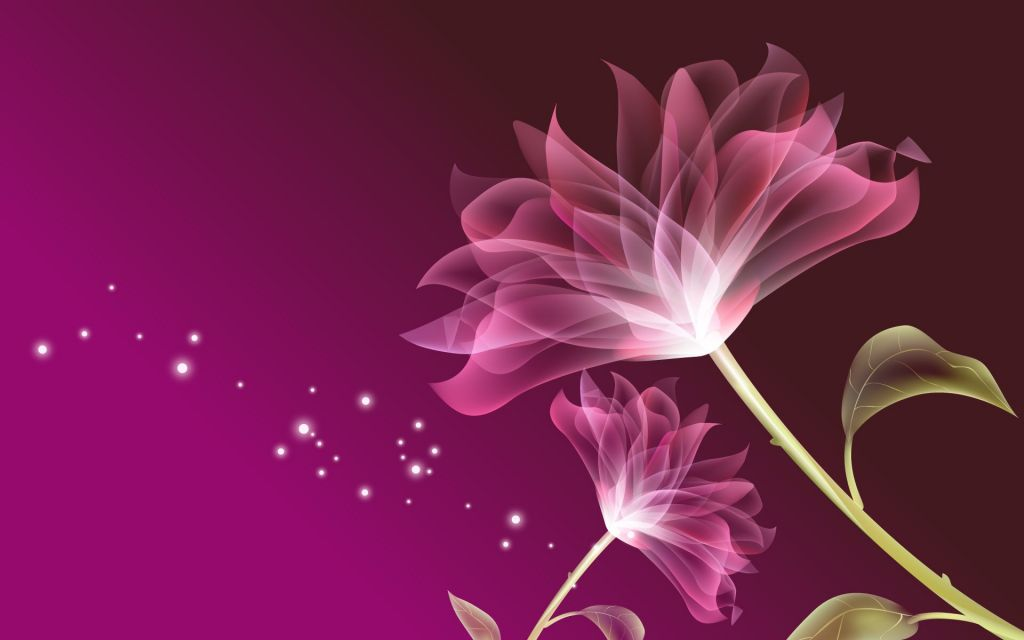 Wallpaper Bunga Sakura Di Dinding Paling Indah Untuk Pink Flowers Wallpapers Wallpapersafari